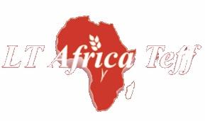 LT Africa Teff